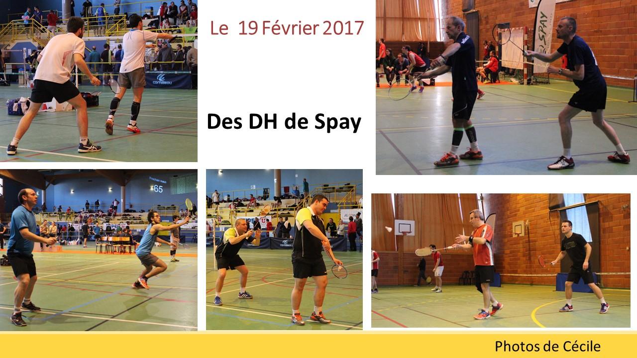 DH Spay 2017