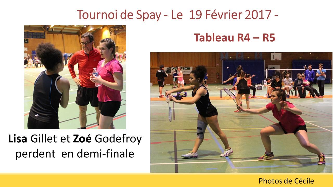 Zoé et Lisa spay 2017